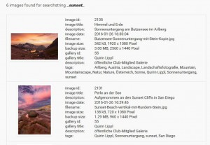 NGG Smart Image Search result list